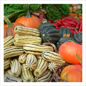 marketsquashes