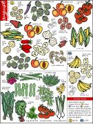 August produce