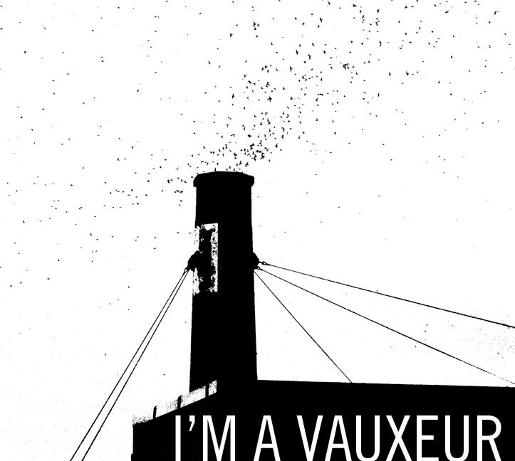 Vaux's swifts: I'm a vauxeur