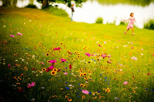 running in a field of flowers